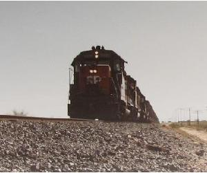 Trains In the Desert